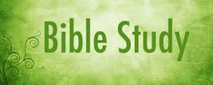 Bible Study green